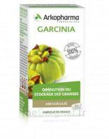 Arkogélules Garcinia Gélules Fl/45 à FESSENHEIM