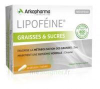 Lipofeine Graisse et Sucres Gélules B/60 à FESSENHEIM