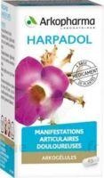 ARKOGELULES HARPAGOPHYTON Gélules Fl/150 à FESSENHEIM
