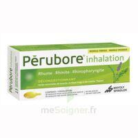 PERUBORE Caps inhalation par vapeur inhalation Plq/15 à FESSENHEIM