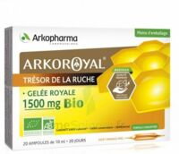Arkoroyal Gelée royale bio 1500 mg Solution buvable 20 Ampoules/10ml à FESSENHEIM