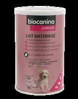 Biocanina Lait poudre maternisé B/400g à FESSENHEIM