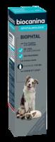 Biophtal Solution externe 125ml à FESSENHEIM